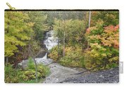 Princess Louise Falls Carry-all Pouch