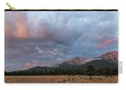 Princeton Panorama 1 Carry-all Pouch