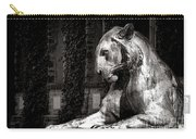 Princeton University Mighty Tiger  Carry-all Pouch