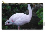 Profile Of A Pink Lesser Flamingo Carry-all Pouch