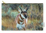 Pronghorn Antelope Amid Fall Foliage Wyoming Carry-all Pouch