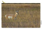 Pronghorn At Golden Hour Carry-all Pouch