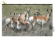Pronghorn Harem Carry-all Pouch