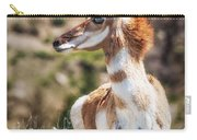 Pronghorn Mother Carry-all Pouch