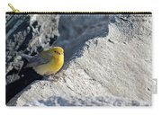 Prothonotary Warbler Carry-all Pouch