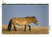 Przewalskis Stallion Carry-all Pouch
