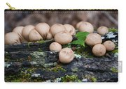 Puffball Gathering Carry-all Pouch