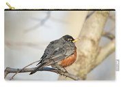 Puffed Robin Carry-all Pouch