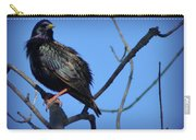 Puffed Up Starling Carry-all Pouch