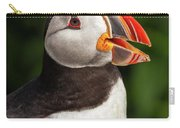 Puffin Head Carry-all Pouch