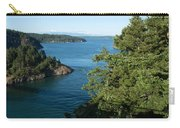 Puget Sound Carry-all Pouch