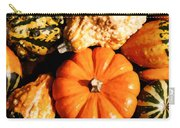 Pumkin And Gourds Carry-all Pouch