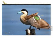 Puna Teal Reflections Carry-all Pouch