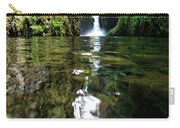 Punchball Falls Carry-all Pouch