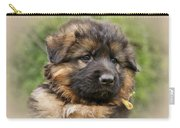 Puppy Portrait II Carry-all Pouch by Sandy Keeton