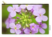 Purple Circle Of Dames Rocket Phlox In Spring Garden Carry-all Pouch