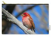 Purple Finch In Spring Carry-all Pouch
