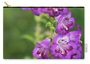 Purple Trumpet Flowers  Carry-all Pouch