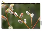 Pussy Willows In Spring Carry-all Pouch