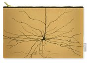 Pyramidal Cell In Cerebral Cortex, Cajal Carry-all Pouch