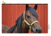 Quarter Horse Carry-all Pouch by Sandy Keeton