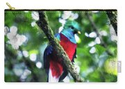 Quetzal In Monteverde Carry-all Pouch