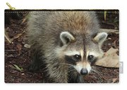 Raccoon Bandit Carry-all Pouch