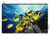 Raccoon Butterflyfish Carry-all Pouch