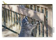 Raccoon Shenanigans Carry-all Pouch