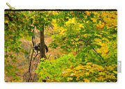 Racoon In Fall Trees Carry-all Pouch