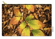 Radiant Beech Leaf Branches Carry-all Pouch