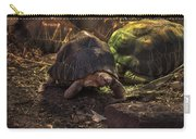 Radiated Tortoise Carry-all Pouch
