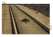 Railroad Bandit Carry-all Pouch