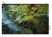 Rainbow Autumn Ferns At Pickle Creek 6303 H_3 Carry-all Pouch