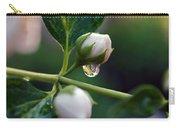 Raindrop Garden Carry-all Pouch