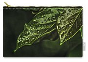Raindrops Hdr Carry-all Pouch