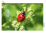 Raindrops On Ladybug Carry-all Pouch