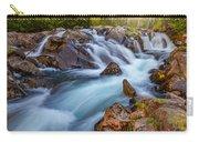 Rainier Runoff Carry-all Pouch