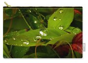 Rainy Nandina Carry-all Pouch