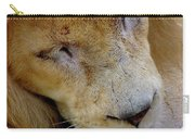 Ramses Carry-all Pouch