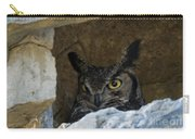 Raptor Eyes Carry-all Pouch