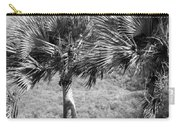 Rare Palm Trees Curacao Carry-all Pouch