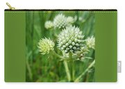 Rattlesnake Master Carry-all Pouch