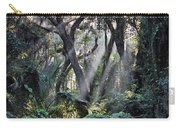 Rays Of Sunlight Carry-all Pouch