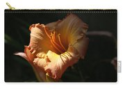 Reaching For The Light Carry-all Pouch