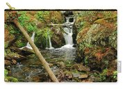 Reany Falls 2 Carry-all Pouch