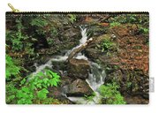 Reany Falls 5 Carry-all Pouch