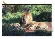Reclining King Carry-all Pouch