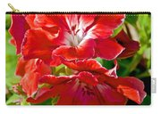 Red Amaryllis At Pilgrim Place In Claremont-california Carry-all Pouch