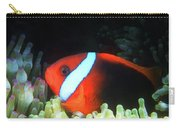 Red And Black Anemonefish, Great Barrier Reef Carry-all Pouch